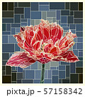 Stained glass window with red velvet tulip. 57158342