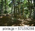 八菅山と八菅神社(かながわの景勝50選) 57159298