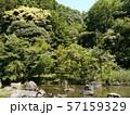 八菅山と八菅神社(かながわの景勝50選) 57159329