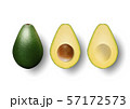 Vector 3d Realistic Whole and Half Avocado Set with Seed Closeup Isolated on White Background 57172573