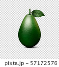 Vector 3d Realistic Whole Avocado with Leaf Closeup Isolated on Transparent Background. Design 57172576