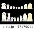 白い犬のボーダー セット 57179011