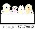 ボードを持つ白い犬のグループ 57179012