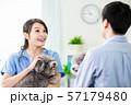 veterinarian at veterinary clinic 57179480