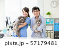 pet dog and the vet 57179481