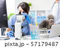 veterinarian use microscope 57179487