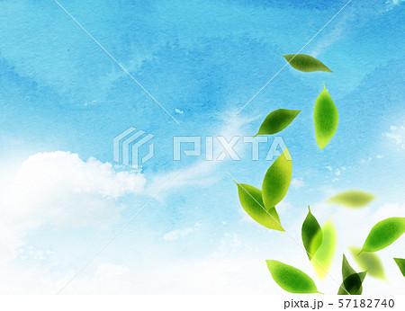 背景素材 空 緑 テクスチャー 57182740