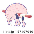 Exhausted, Brain collection 57197949