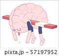 Exhausted, Brain collection 57197952