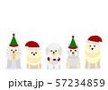 犬 クリスマス セット 57234859