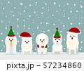 犬 クリスマス 背景 57234860