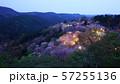 奈良 吉野山 下千本 桜 ライトアップ 57255136