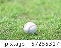 野球ボール 57255317