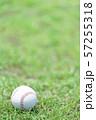 野球ボール 57255318