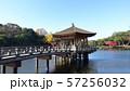 奈良公園 浮見堂 57256032