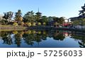 奈良 猿沢池 57256033