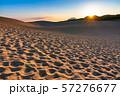 《鳥取県》鳥取砂丘の夜明け 57276677