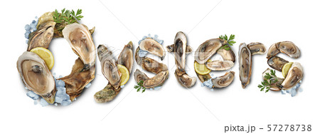 Fresh Oysters Seafood 57278738