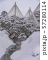 【兼六園 雪吊り】 57280114
