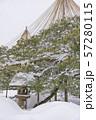 【兼六園 雪吊り】 57280115