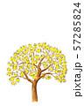 レモンの木 水彩画 イメージ 57285824