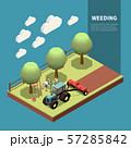 Weeding Isometric Composition 57285842