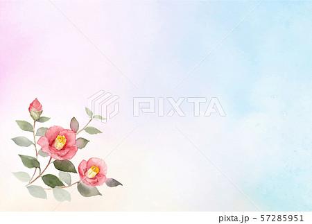 寒中はがきテンプレート 椿 水彩背景 横デザイン 57285951