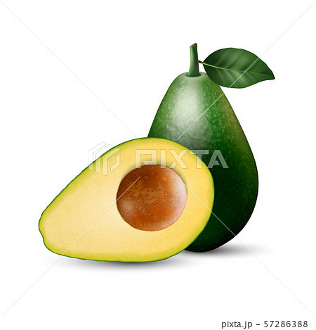 Vector 3d Realistic Whole and Half Avocado with Seed and Leaf Closeup Isolated on White Background 57286388
