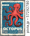 Marine red octopus, underwater monster 57292780