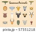 サヴァンナの動物1 57351218