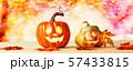 Decorated Halloween pumpkins 57433815