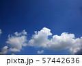 青空と白い雲 perming  空と雲の写真素材 57442636