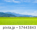 秋の田園風景 (大町市から爺ヶ岳・鹿島槍ヶ岳・五竜岳を望む) 57443843