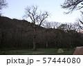 徳澤の朝  57444080