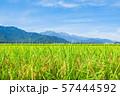 秋の田園風景 (大町市から爺ヶ岳・鹿島槍ヶ岳・五竜岳を望む) 57444592