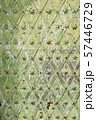 Old medieval metal gate texture. Green grunge background 57446729