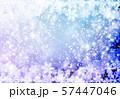 紫色雪柄 57447046