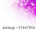 紫色雪柄 57447054