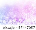 紫色雪柄 57447057