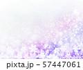 紫色雪柄 57447061