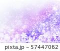 紫色雪柄 57447062
