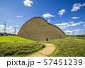 岐阜県 多治見市 モザイクタイルミュージアム 57451239