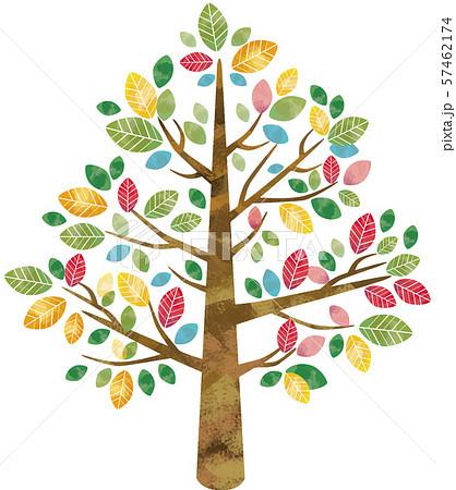 大木と木:自然 大木 樹木 木 葉っぱ 水彩 カラフル 葉 手描き 枝 森 57462174