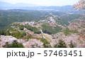 吉野山 上千本 花矢倉展望台 57463451