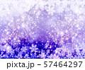 紫色雪柄 57464297