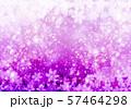 紫色雪柄 57464298