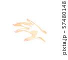 女性の手、自然なポーズ 57480148