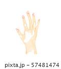 女性の手、手の甲 57481474