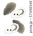 牡蠣 キャラクター イラスト 57498346