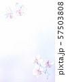 はがきテンプレート 胡蝶蘭 57503808